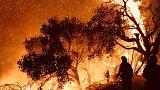Les pompiers au contact des flammes à Carpinteria, Californie