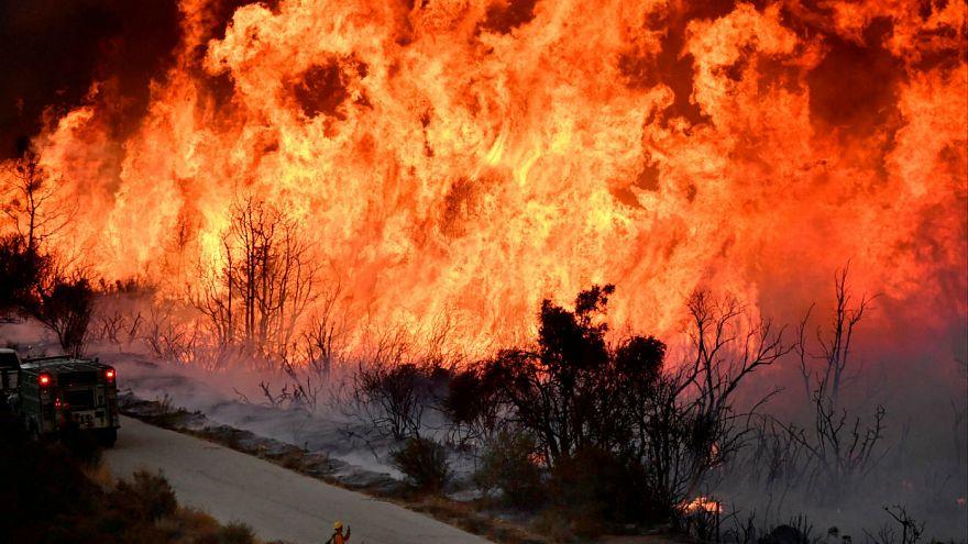 Καλιφόρνια: Μεγάλη περιβαλλοντική καταστροφή από τις πυρκαγιές