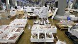 Pêche européenne : moins d'anguilles, plus de langoustines