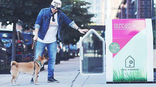 """""""Dog Parker"""", uma casota temporária para cães"""