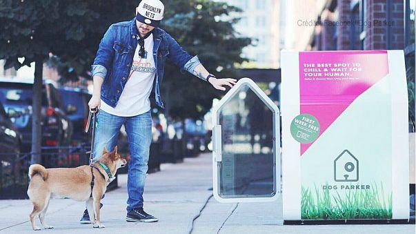 """""""Dog Parker"""", a casota para cães proibidos de ir às compras"""