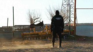 Ein Polizist am Tatort beobachtet einen Esel