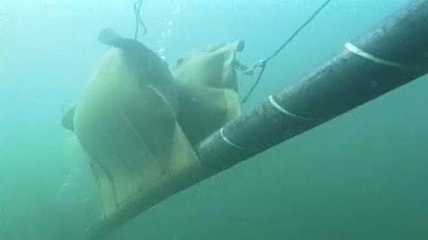Oroszország a vízalatti kábeleket fenyegeti