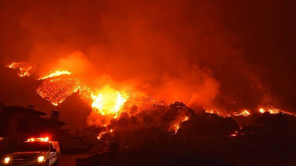 Kaliforniya tarihinin en büyük üçüncü yangın felaketini yaşıyor