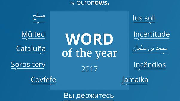 11 dilde 'yılın kelimeleri'