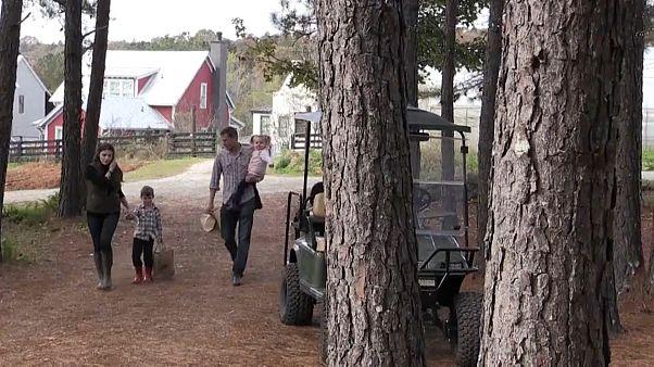 Neuer Trend in den USA: Zurück zur Natur im Agrihood