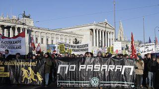 Entre 5.000 y 10.000 personas protestaron en Viena este lunes.