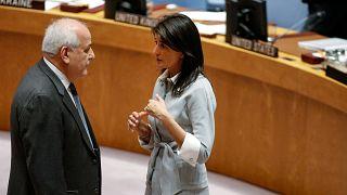 السفيرة الأمريكية نيكي هيلي مع مندوب فلسطين لدى الأمم المتحدة رياض منصور