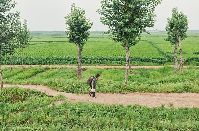 A North Korean citizen walks on a path
