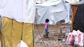 """Mogherini: Nur """"sichere"""" und """"freiwillige"""" Rückkehr von syrischen Flüchtlingen"""