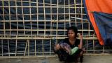 Myanmar'dan BM Özel Raportörüne giriş yasağı