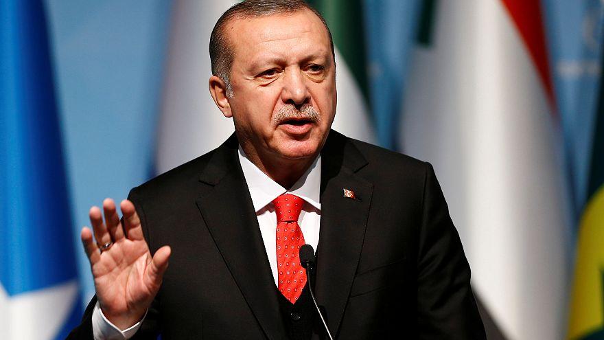 الرئيس التركي يهاجم وزير الخارجية الإماراتي