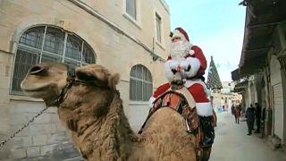 CHRISTMAS-SEASON_JERUSALEM_TREES