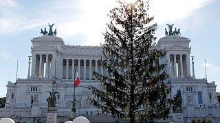 Csodájára járnak az elpusztult római karácsonyfának a turisták