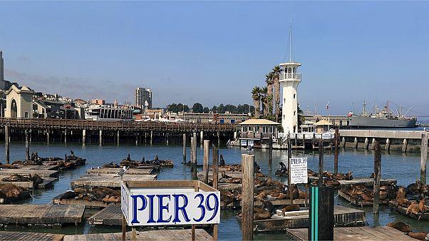 Attentat déjoué à San Francisco : un homme interpellé