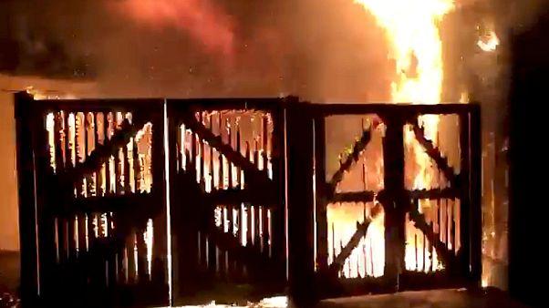شاهد: حريق في حديقة حيوان لندن