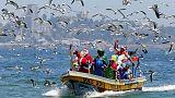 Karácsony a világban: az idei 12 legjobb kép