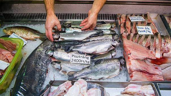 Egyre több halat eszünk, de van még hova fejlődnünk