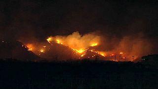 Mallorca: Waldbrand zerstört mehr als 75 Hektar Land