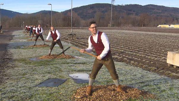 Aperschnalzer-Saison beginnt in Oberbayern und im Salzburger Land