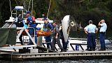 Utasokkal együtt süllyedt el egy hidroplán