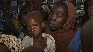700 personas escapan del yugo de Boko Haram