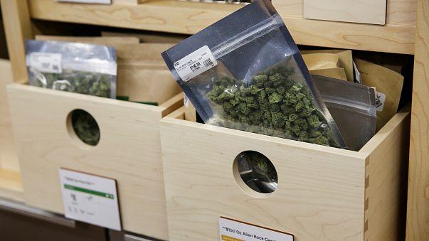 Le cannabis en vente libre en Californie
