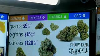 California legalises recreational pot
