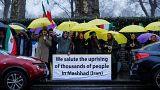 Demos und Appelle: Reaktionen auf die Lage im Iran