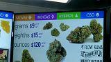 Kaliforniya'da keyif amaçlı esrar satışı artık yasal