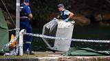 'It just nosedived' - eyewitnesses describe deadly Sydney sea plane crash