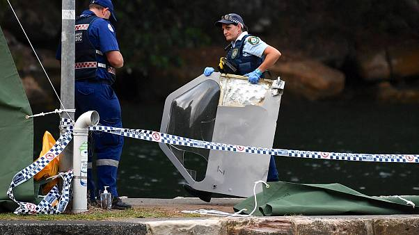 'It just nosedived' - eyewitnesses describe deadly Sydney sea plane crash