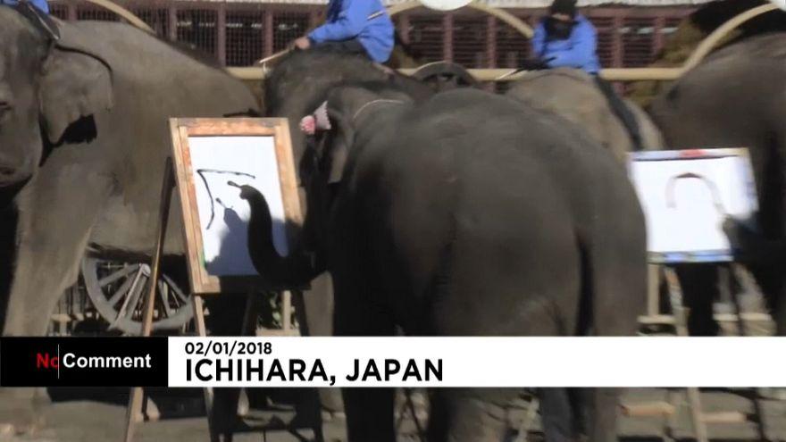 اليابان: الفيلة تكتب وترسم