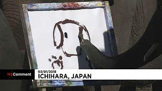 Művészi rajzok - elefántoktól