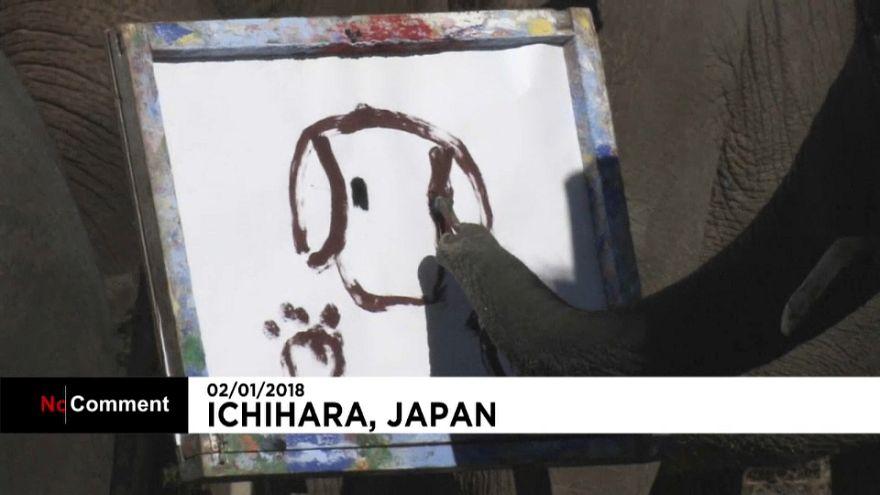 Elefantes que pintam e escrevem