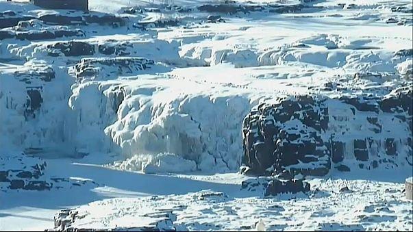 La vague de froid nord-américaine inquiète