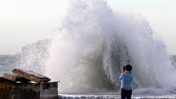 Wellen in Marseille