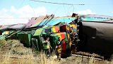 Collision mortelle entre un train et un camion en Afrique du Sud