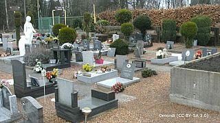 ¿Se enterrará a las mascotas con su dueño en Bélgica?