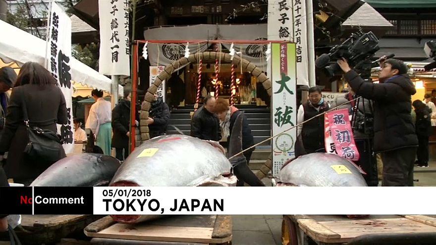 """Токио: """"золотая"""" рыбка ушла с молотка"""