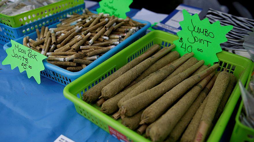 """""""Guerra da Marijuana"""" aberta nos EUA"""
