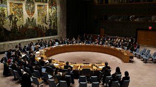 OHE: Διαξιφισμοί για το Ιράν στο Συμβούλιο Ασφαλείας