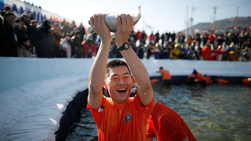 Güney Kore balık tutma festivali 'Sancheoneo'yu kutladı