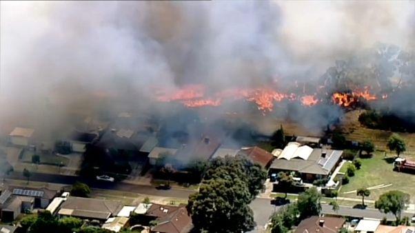 El sureste de Austalia azotado por el fuego y el calor