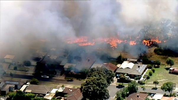Vague de chaleur extrême en Australie