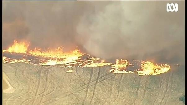 Australia: caldo record e incendi