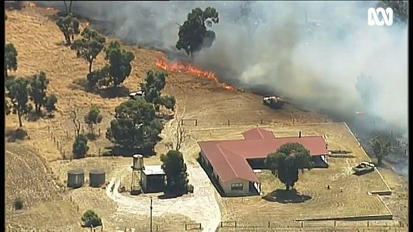 Пламя в предместьях Мельбурна