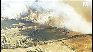 Australien: Extremtemperaturen und schwere Buschbrände
