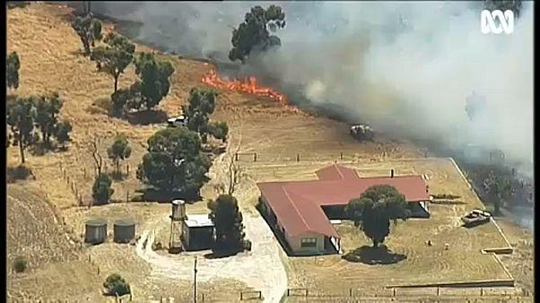 Vaga de calor e incêndios castigam sudeste da Austrália
