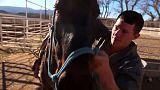 Pferde und das eigene Leben zähmen